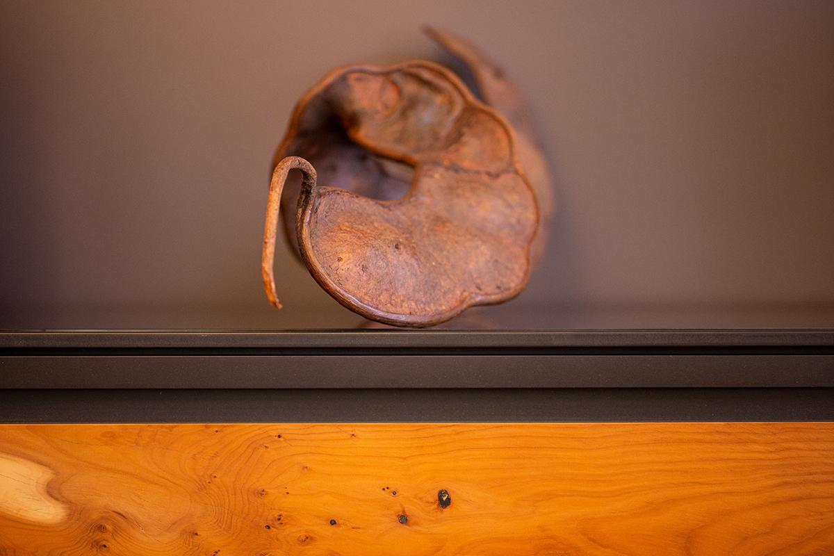 Morsch-Fotos-Objekte-3